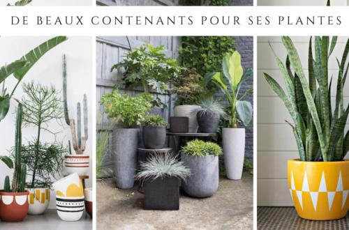 De beaux contenants pour ses plantes